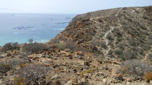 Tenerife trekking
