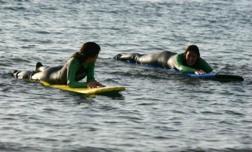 blog surf