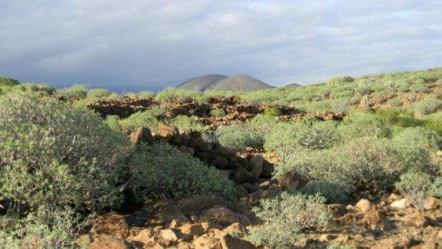 Trekking Tenerife